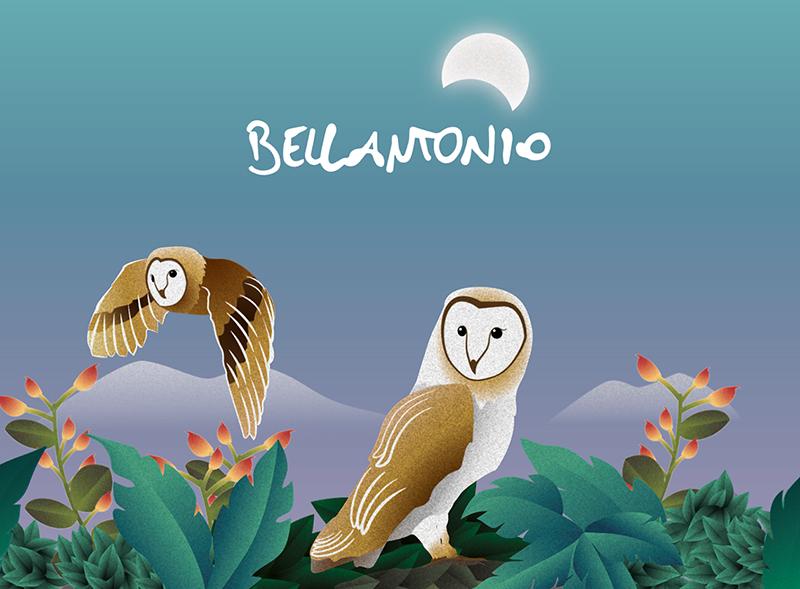 BELLANTONIO